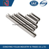 Chine Factory OEM Spring Type Straight Pins
