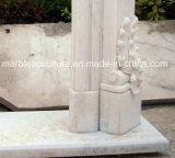 Camino moderno di vendita caldo del marmo di stile con i fiori (SY-MF129)