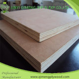 Herr oder E Glue Commercial Plywood Linyi-Qimeng Factory Produce 1.6-18mm für Furniture und Packing und Construction