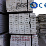 La linea di produzione del comitato di soffitto del PVC strato di legno ha spumato macchina di Extrudering del comitato