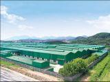 構造スチールの保管倉庫(KXD-SSW1046)