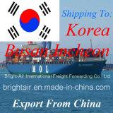 Taxas da carga do frete de mar dos serviços de transporte internacional de China a Coreia do Sul
