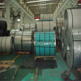 Крен Staineless стальной/умеренная цена 317L катушки