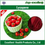 Poudre normale de lycopène d'extrait de tomate de qualité