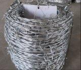 Bwg14X14, 16X16 Caldo-Ha tuffato il filo del filo/bobina galvanizzati del filo