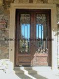 Орнаментальные ручной работы внешние двери входа утюга с транцем