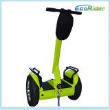Esiii L2 zwei Rad-Selbstbalancierender Roller-Stadt-Straßen-elektrischer Roller