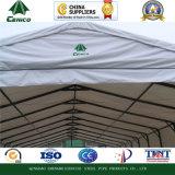 Peak Roof Storage Shelter