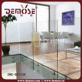 De Balustrade van het Staal van het Glas van Frameless (dms-B21377)