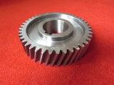 切断の版機械のための拍車ギヤ、鋼鉄拍車の歯ギヤ