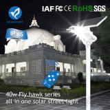 40W todo en una luz de calle solar innovadora