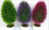 작은 Bonsai 구 Jys15 R8503#의 인공적인 플랜트 그리고 꽃