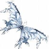 Wasser, Glyzerin, Frucht-Auszug des Citrullus- vulgaris(Wassermelone), Frucht-Auszug des Pyrusmalus-(Apple), Objektiv-essbarer (Linse) Frucht-Auszug, Natrium-PCA, Natriumlaktat