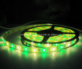 SMD 5060+2835 RGB+W Strip-96 flexível LEDs/M 6500k