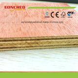 Madera contrachapada marina laminada Okoume de la base de la madera dura para hacer el yate
