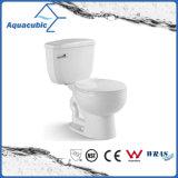 Ceramische Toilet van de Kast van Siphonic van de badkamers het Tweedelige (AT6700)