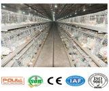 Système de matériel de cage de ferme avicole de grilleur (un type bâti)