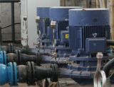 Fabrikmäßig hergestellte Dfg vertikale einzelnes Stadiums-Schleuderpumpe China-