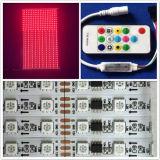 디지털 RGB Ws2811 소형 RF 관제사 LED 지구 견본