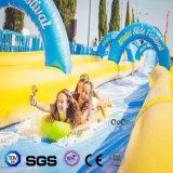Glissière d'eau gonflable de modèle de l'eau de cocos pour Commerical LG8091