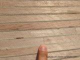 Het hoogwaardige Meubilair Blockboard van Malacca voor Decoratie /Construction
