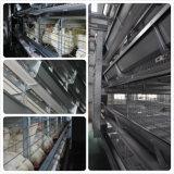 Cage automatique de poulet de couche de ferme avicole de batterie de bâti du meilleur modèle H
