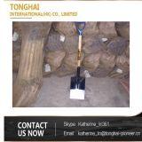 Longue pelle à vente chaude avec le traitement en bois