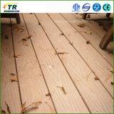 Materiali da costruzione di legno di plastica di Decking WPC