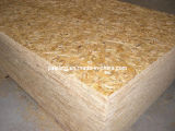 OSB (1, 2, 3, 4) /Construction-Vorstand