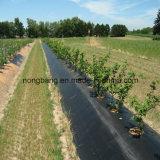 Tela tecida PP agricultural da tampa à terra