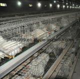 Cage de poulet de matériel de ferme avicole de grilleur de Chine