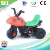 Motocicleta favorita dos miúdos da bicicleta do motor elétrico do bebê da bateria na venda