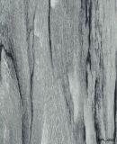 معدنة [هبل/فيربرووف] لوح /High-Pressure نضيدة مع معدنة تصميم