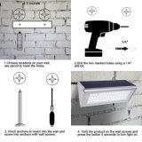 Lampe imperméable à l'eau de mur de lumière de l'alliage d'aluminium 48 DEL de micro-onde de détecteur extérieur solaire de Radarmotion pour le jardin