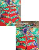 Form-einteilige Badebekleidungs-Sommerferien-Badeanzug-Druckenswim-Abnützung