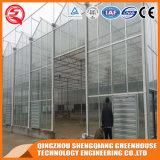 Landwirtschafts-rostfreier Stahl-Aluminiumprofil PC Blatt-Gewächshaus