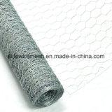 Alta qualità esagonale della rete metallica del pollo