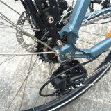 Bicicleta MEADOS DE da cidade E do motor (RSEB-511)