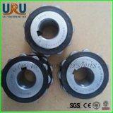 China-zylinderförmige Rollen-Exzenterdrehenarm-Peilung Rn219em Rn220em Rn221em Rn222em Rn224em