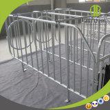 Porcs durables de Galvanzied d'IMMERSION chaude dans la stalle de gestation