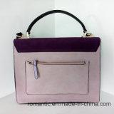 Trendy Handtassen van het Leer van de Vrouwen van de Ontwerper van het Merk (nmdk-042606)