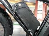 バイク、脂肪のための卸し売り電動機は電気バイクを疲れさせる