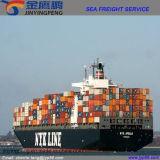 As logísticas prestam serviços de manutenção/frete de mar/transporte de China a Ámérica do Sul