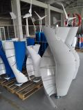 Générateur de turbine vertical spiralé de vent d'axe à C.A. 12V 100W petit (SHJ-NEV100S)