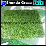 De Helderheid die van Pu Kunstmatig Gras 25mm steunen