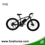 Beach Snow E-Bike avec Fat Tire / Big Power