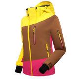 Desgaste ativo ao ar livre das mulheres que caminha o revestimento de esqui de acampamento