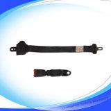 Einziehbare Zwei-Punkt Sicherheitsgurte (XA-022)