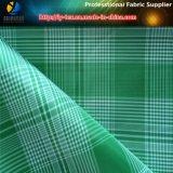 Катионоактивный ткань шотландки, 2 вида пряжи, цвет 2