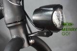 Велосипед Approved электрической тучной автошины En15194 складывая для европейских стран
